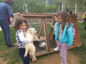 AIS students at Agroturizem Huqi Resort