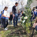 Planting tree with Tirana Mayor